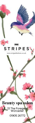 Stripes beauty
